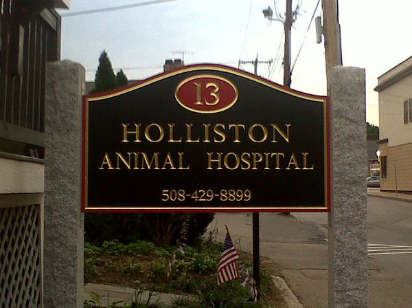 holliston-vet